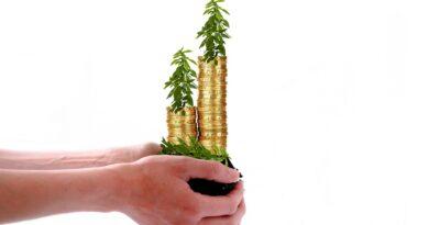 Investeringsforening Investeringsfond ETF